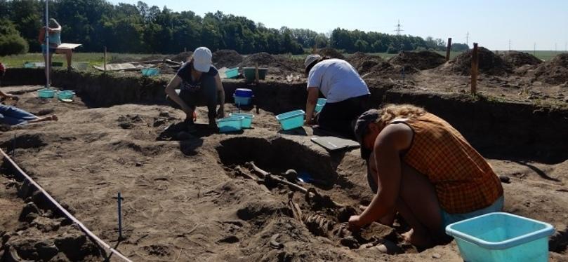 ВСуздальском Ополье исследовано кладбище XIV–XVвв.